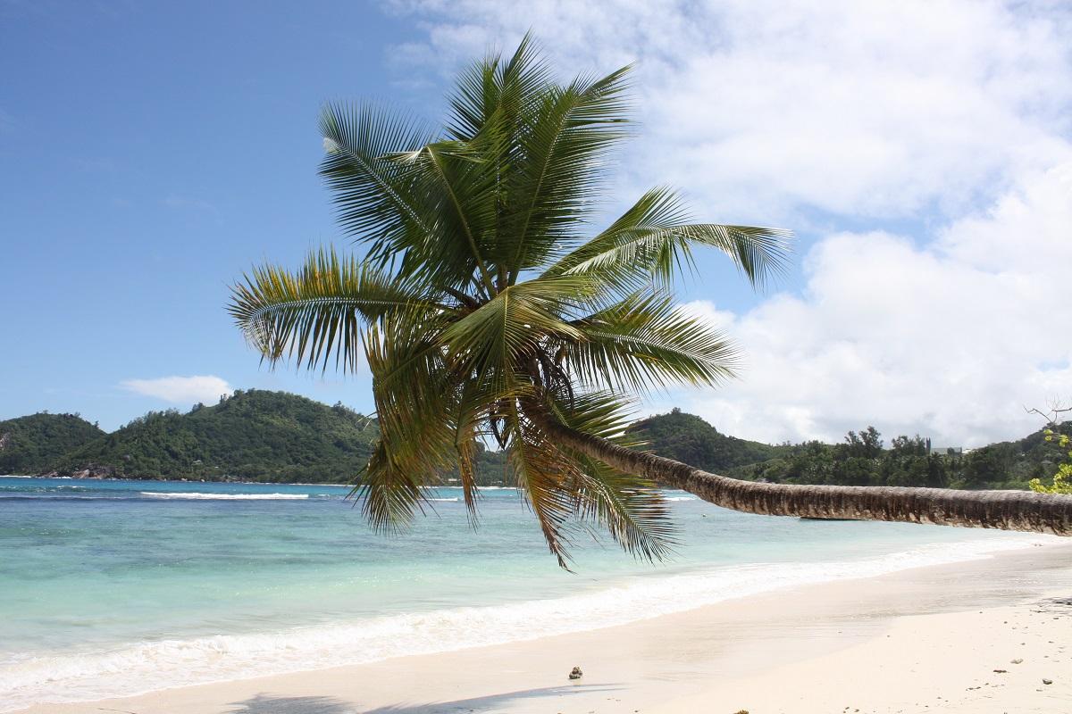10 Gründe Seychelles zu besuchen ИЛИ 10 причин поехать на Сейшелы